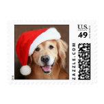 Golden Retriever With Santa Hat Postage Stamp