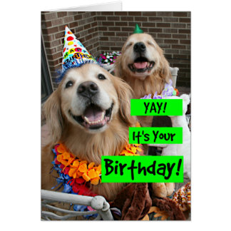 Golden Retriever Yay Its Your Birthday Card