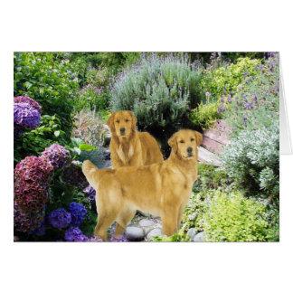 Golden Retrievers Garden Buddies Card