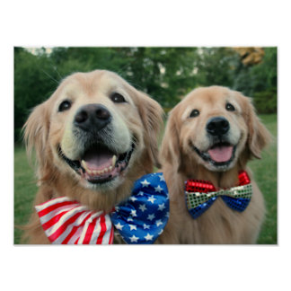 Golden Retrievers in Bow Ties Independence Day Poster