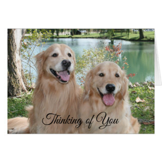 Golden Retrievers in the Park Thinking of You Card