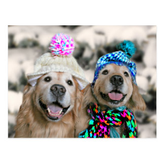 Golden Retrievers in Winter Hats Holiday Christmas Postcard