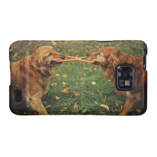 Golden Retrievers playing tug-of-war with toy in Galaxy SII Case