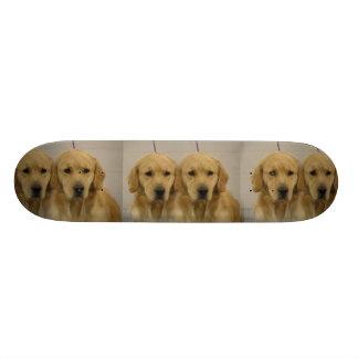 Golden Retriver Twins Skateboard