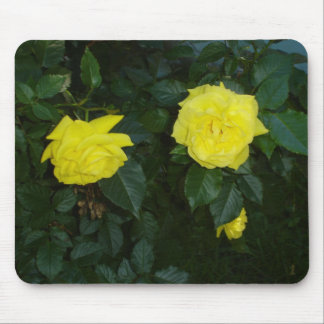 Golden Rose 2 Mouse Pad
