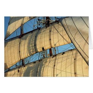 Golden Sails of a Tallship Card
