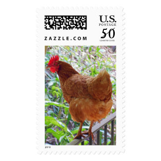 Golden Sex-link Hen Postage