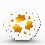 Golden Shimmer Maple Leaf Award