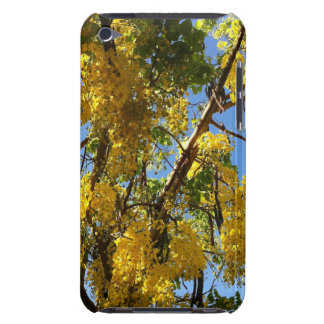 Golden Shower Tree Barely There iPod Cover