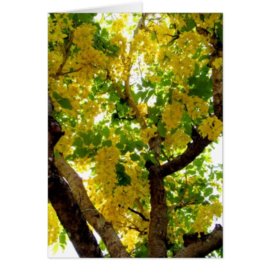 Golden Shower Tree Card
