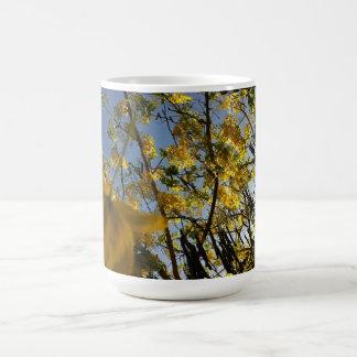 Golden Shower Tree Coffee Mugs