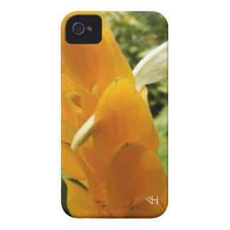 Golden Shrimp Plant Flower iPhone 4 Cover