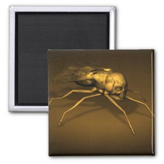 Golden Skull Fly 2 Inch Square Magnet