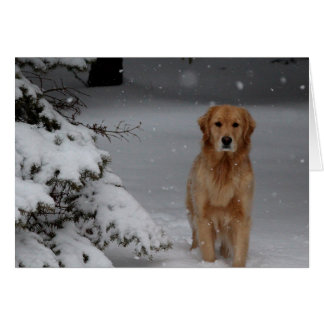 Golden Snowy Christmas Greeting Card