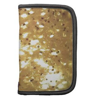 golden sparkle folio planner