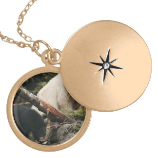 Golden Spirit Bear Locket