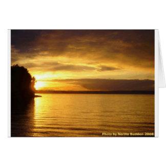 Golden Splash Notecard Greeting Cards