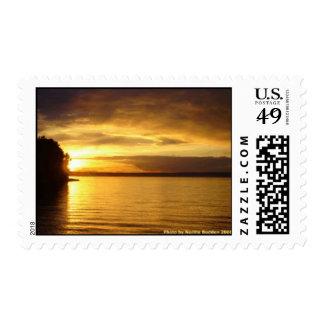 Golden Splash over Pigeon Lake Postage Stamp