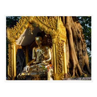 golden stupa buddha postcards