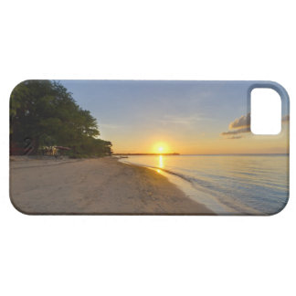 Golden Sun Ball Setting Over Tropical Island iPhone SE/5/5s Case