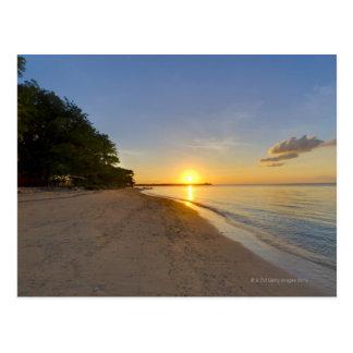 Golden Sun Ball Setting Over Tropical Island Postcard