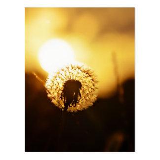 golden sun dial postcard
