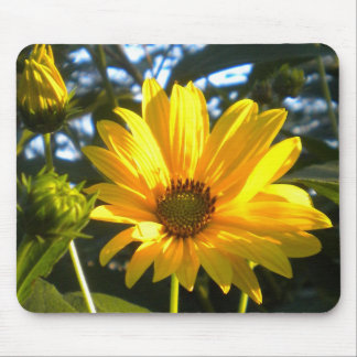 Golden Sunflower Mousepad