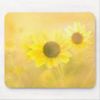 Golden Sunflowers Mouse Pad