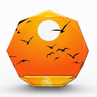 Golden Sunrise & Birds Flying on River Award