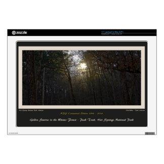 Golden Sunrise Winter Forest Centennial Ed Laptop Decal