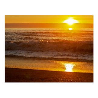 Golden Sunset at Horsfall Beach Postcard