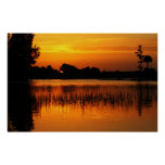 Golden Sunset Behind a Lake Poster