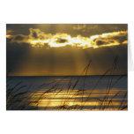 Golden Sunset Cards