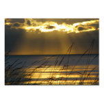 Golden Sunset Large Business Cards (Pack Of 100)