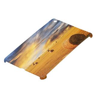 Golden Sunset Over Farm Field iPad Mini Cases
