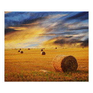 Golden Sunset Over Farm Field Poster