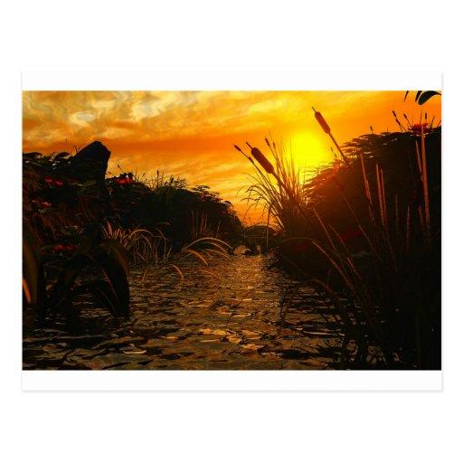 Golden Sunset Post Cards