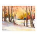 Golden Sunset Winter Trees Post Cards