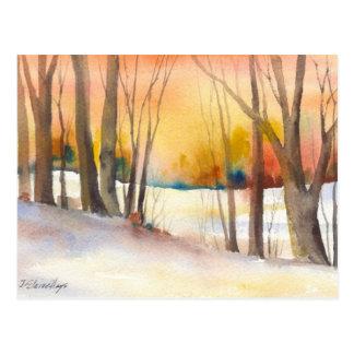 Golden Sunset Winter Trees Postcard