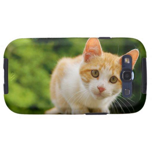 Golden Tabby and White Kitten Samsung Galaxy S3 Case