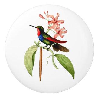 Golden Tailed Sapphire Hummingbird Ceramic Knob