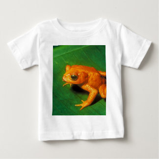 Golden Toad Baby T-Shirt