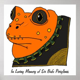 Golden Toad Memorial Poster
