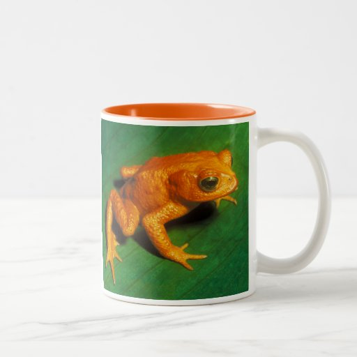 Golden Toad Mug Mug