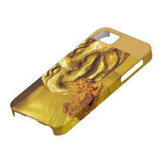 Golden Toad with Happy Face Rock iPhone SE/5/5s Case
