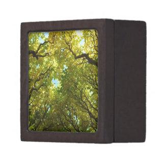 Golden tree box premium jewelry box