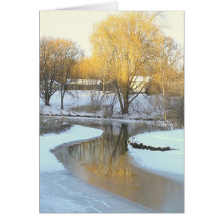 GOLDEN TREE REFLECTED IN PARTIALLY-FROZEN POND STATIONERY NOTE CARD