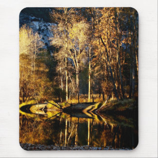 GOLDEN TREES WITH REFLECTIONS IN LATE FALL MOUSE PAD