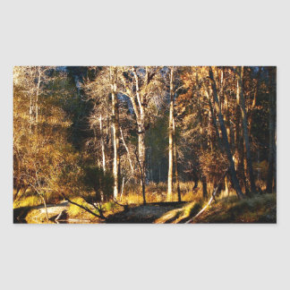 GOLDEN TREES WITH REFLECTIONS IN LATE FALL RECTANGULAR STICKER
