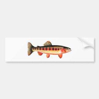 Golden Trout Bumper Sticker